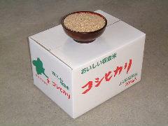 コシヒカリ玄米20kg